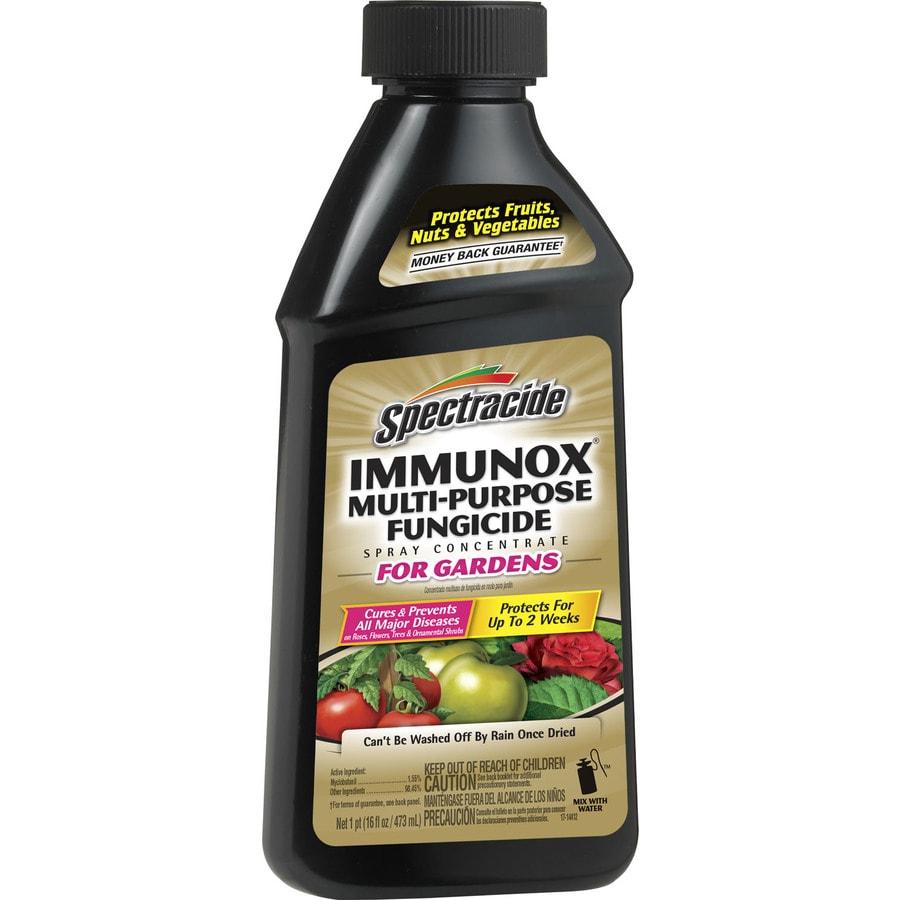 Spectracide 16-oz Multipurpose Fungicide Spray Concentrate for Gardens Liquid