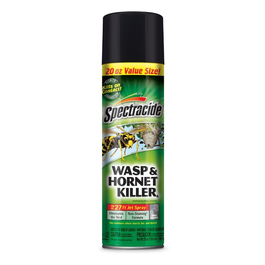 Spectracide Wasp and Hornet 20-oz Insect Killer