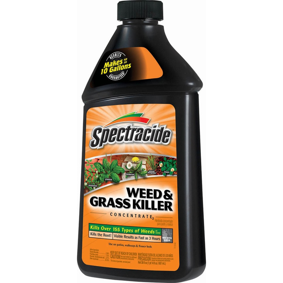 Spectracide Concentrate 30 fl oz Weed and Grass Killer