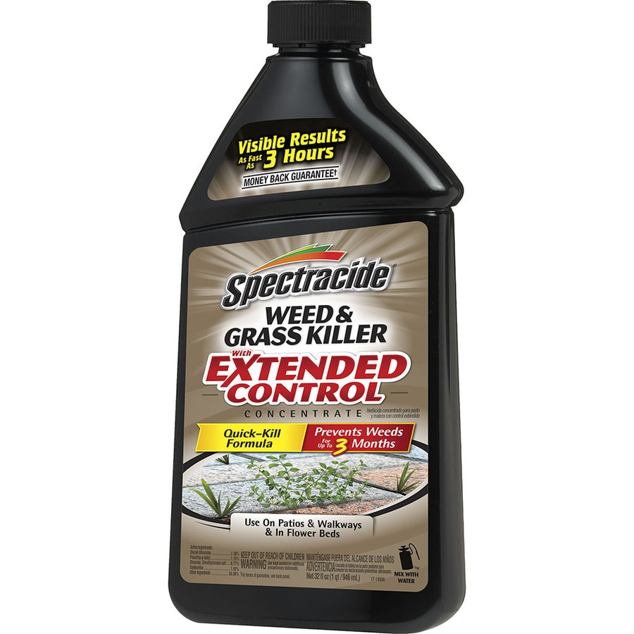 Spectracide Extended Concentrate 32-fl oz Weed and Grass Killer