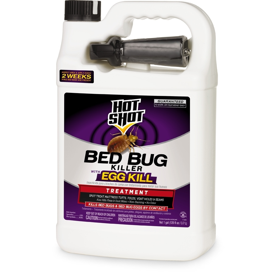 shop hot shot bedbug and flea 1-gallon insect killer at lowes