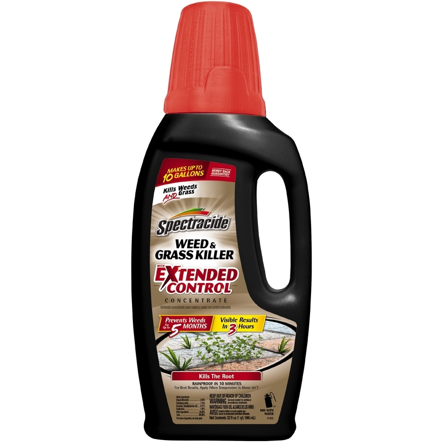 Spectracide Extended Control Concentrate 32 fl oz Weed and Grass Killer
