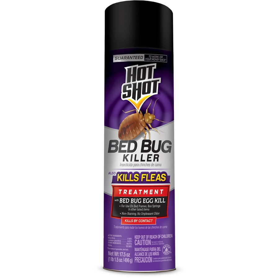 Hot Shot 17 5 Oz Bed Bug Killer At Lowes Com