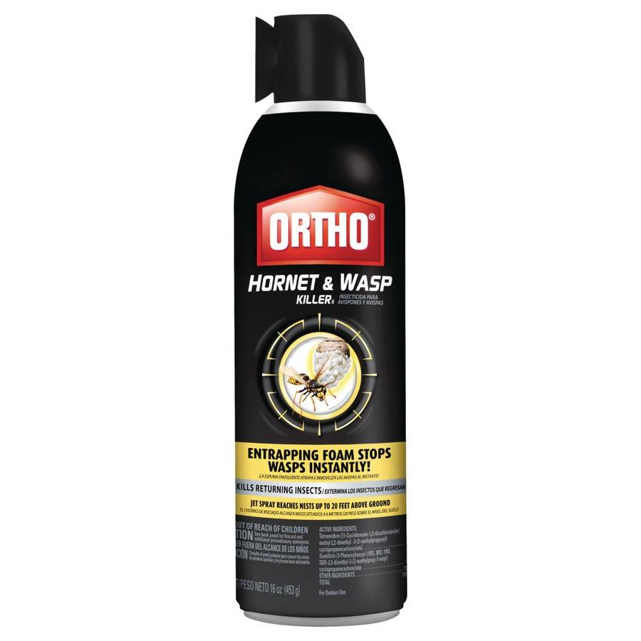 ORTHO Hornet & Wasp 16-oz Insect Killer