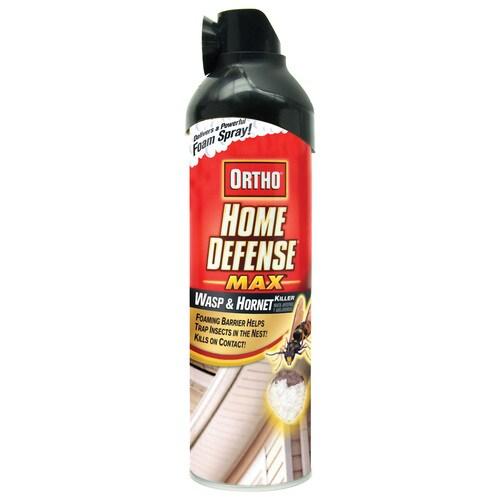 ORTHO Home Defense Max Wasp & Hornet Killer At Lowes.com