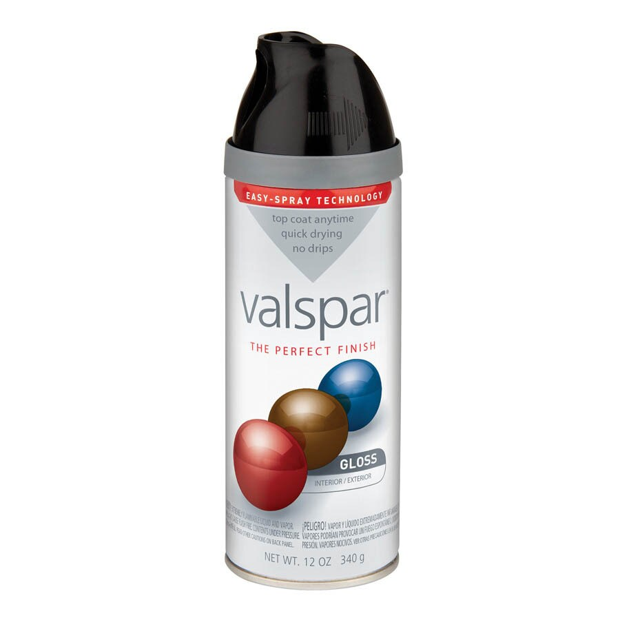 Valspar Black Indoor/Outdoor Spray Paint