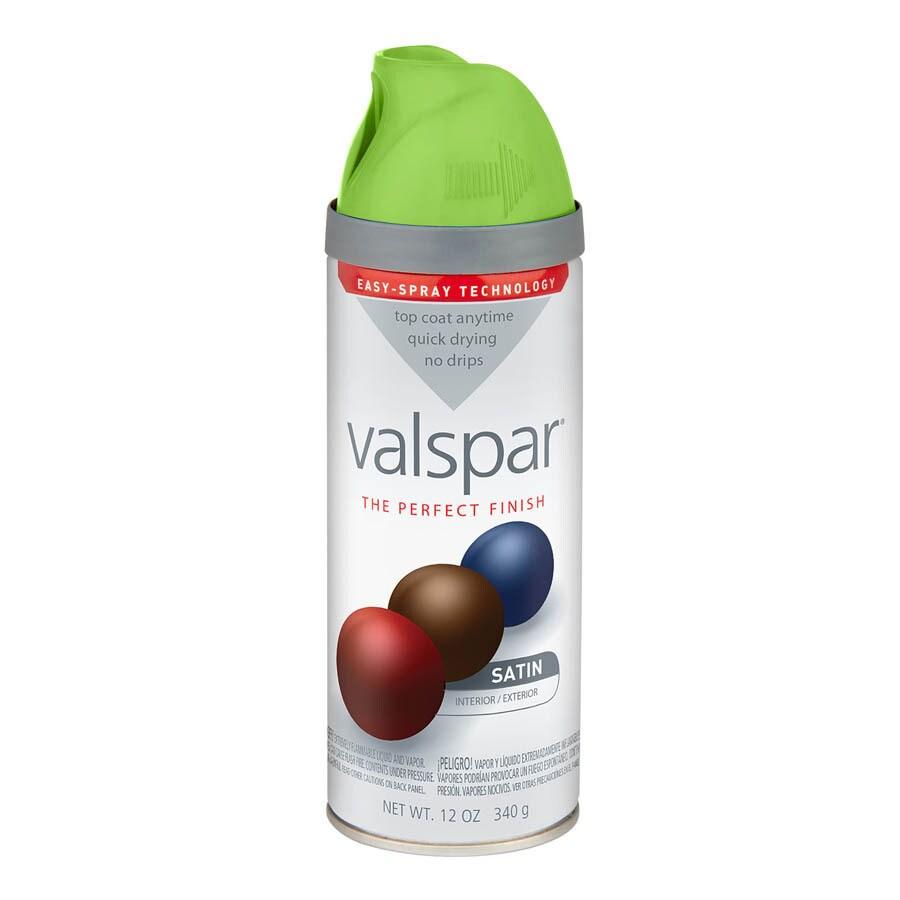 Valspar Everglade Glen Enamel Spray Paint (Actual Net Contents: 12-oz)