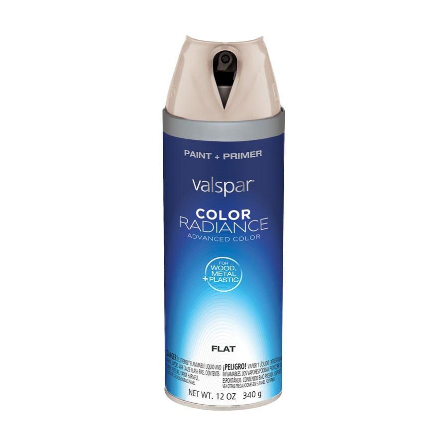 Valspar Riviera Dune Indoor/Outdoor Spray Paint