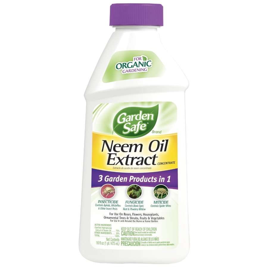 shop garden safe neem oil extract 16 fl oz organic garden insect killer at