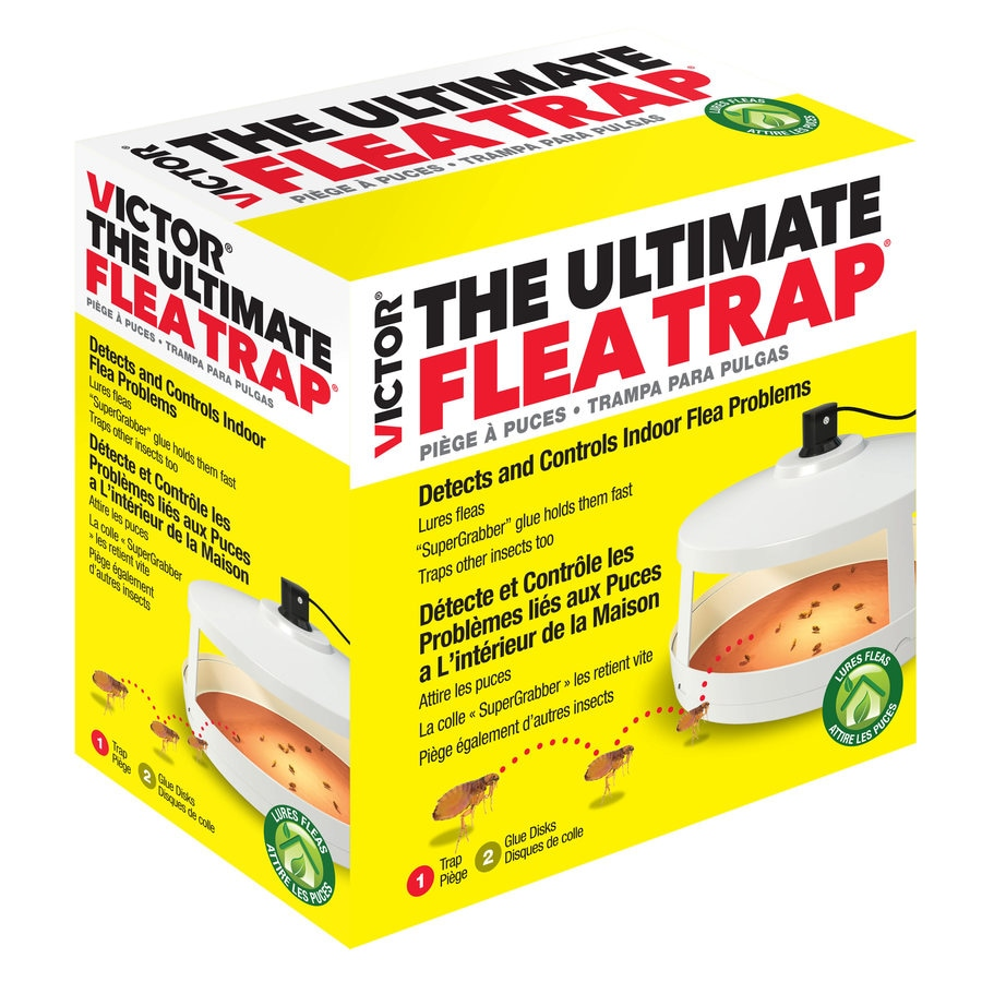 Do It Yourself Home Design: Victor Ultimate Flea Trap At Lowes.com