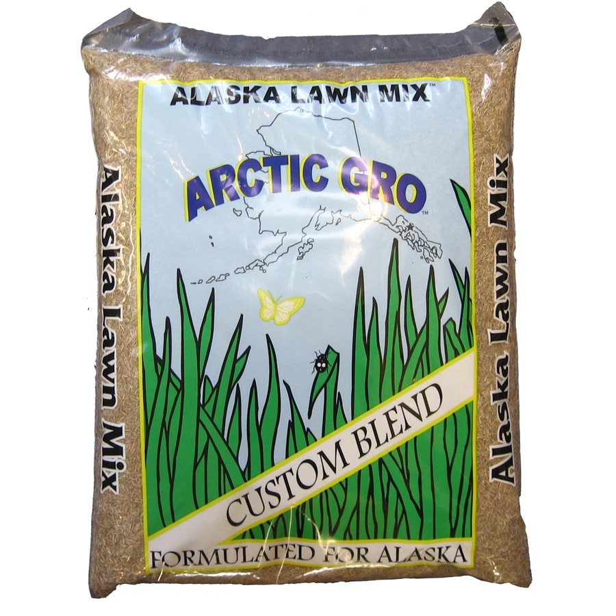 Arctic Gro Artic Gro 5-lb Bluegrass Seed