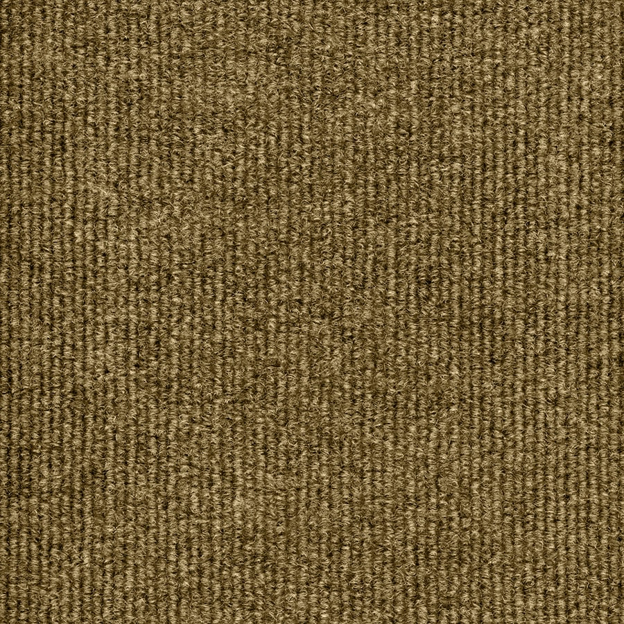Select Elements Foster Stone Beige Needlebond Interior/Exterior Carpet