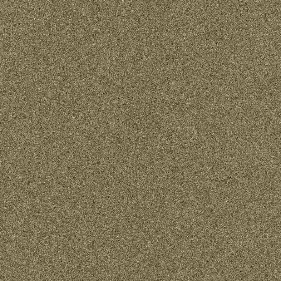 Home and Office Amargosa 12-ft W x Cut-to-Length Taupe Needlebond Interior/Exterior Carpet