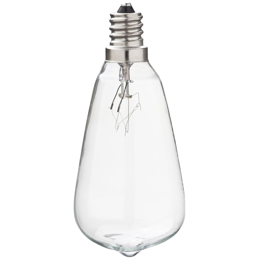 Portfolio Indoor/Outdoor White Incandescent C7 String Light Bulbs