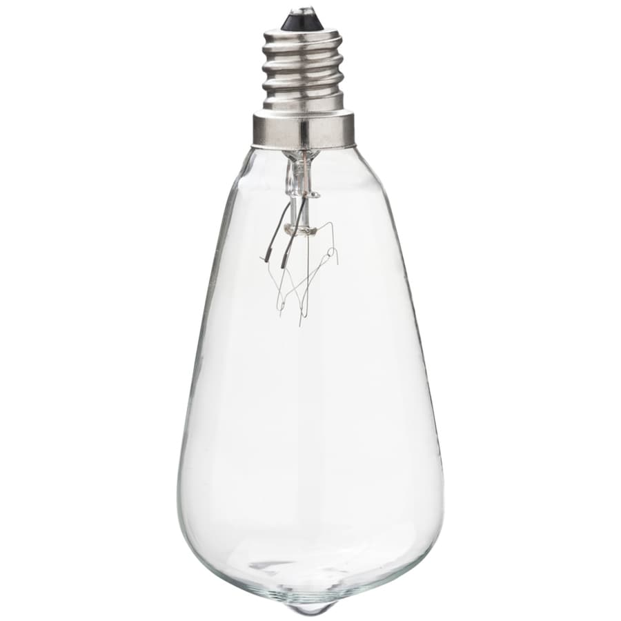 Portfolio Indoor/Outdoor White Incandescent Edison String Light Bulbs