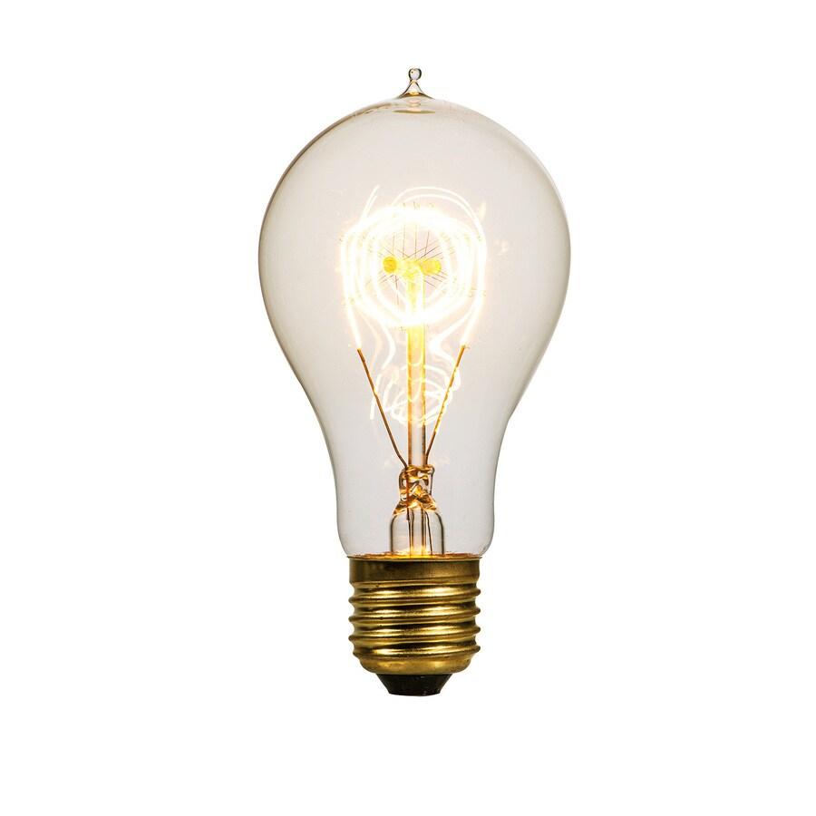 Litex Vintage 60 Watt for Indoor Dimmable Warm White A19 Vintage Incandescent Decorative Light Bulb  sc 1 st  Loweu0027s & Shop Incandescent Light Bulbs at Lowes.com azcodes.com