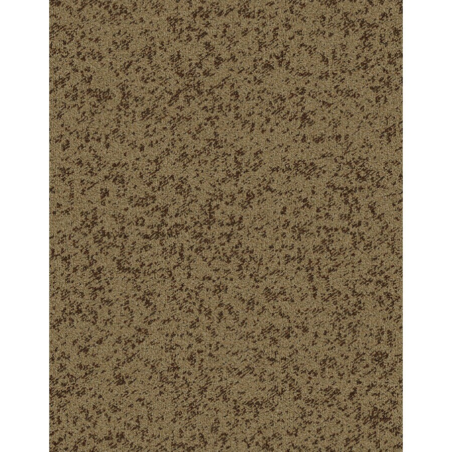 Lexmark Carpet Mills Essentials Focal Point 12-ft W x Cut-to-Length Hot Fudge Pattern Interior Carpet