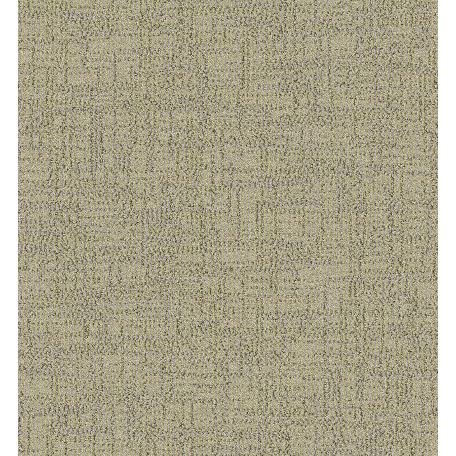 Lexmark Carpet Mills Essentials Ames 12-ft W x Cut-to-Length Oats Pattern Interior Carpet