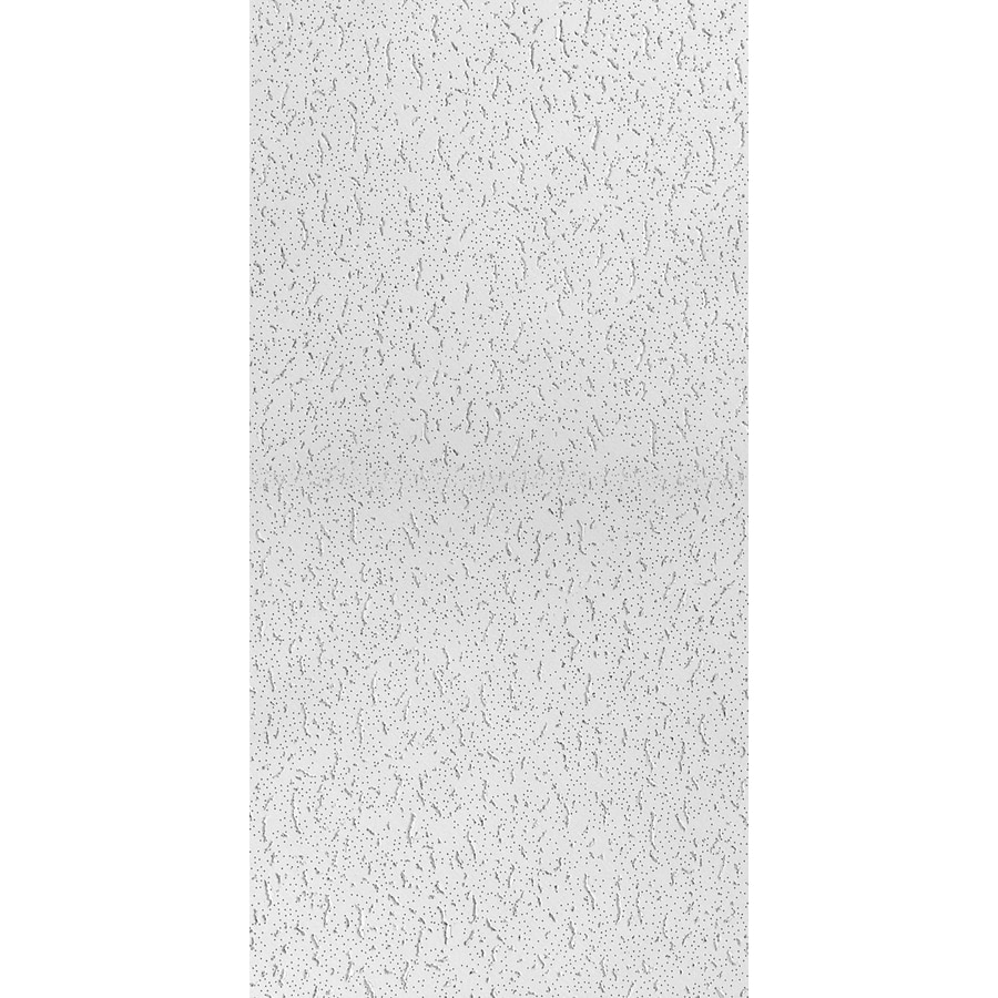 USG Ceilings (Common: 48-in x 24-in; Actual: 47.75-in x 23.75-in) 8-Pack White Fissured 5/8-in Drop Acoustic Panel Ceiling Tiles