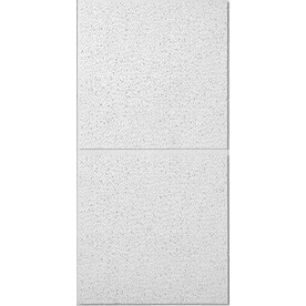 Usg Ceilings Common 48 In X 24 Actual 47 75