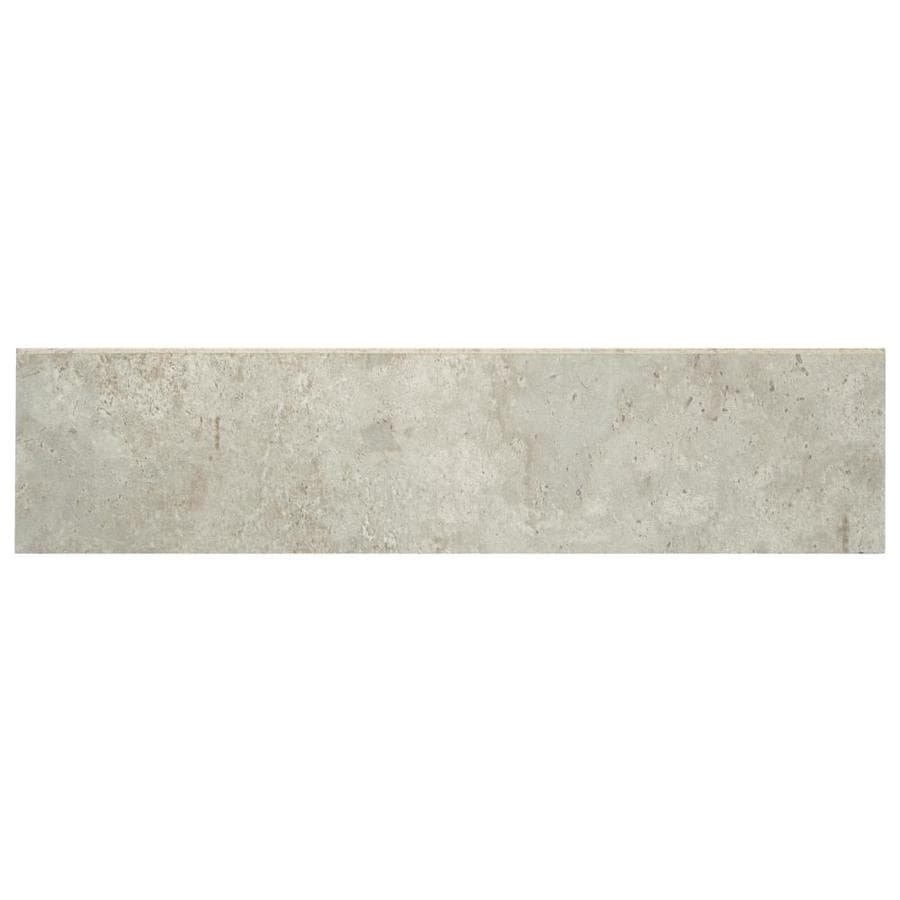 Shop Accent Trim Tile At Lowescom - Daltile portland maine