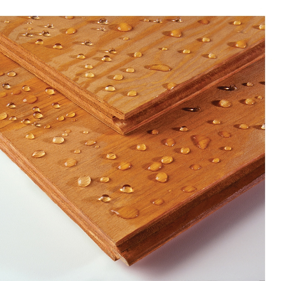 DryPly Structural Plywood