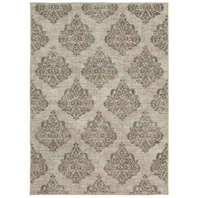 Relic Collection Neutral Rectangular Indoor Machine Made Area Rug Common 5 X 7 Actual Ft W L