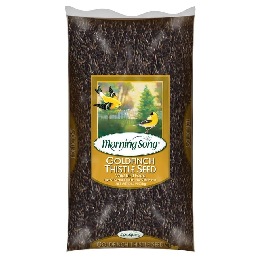 Morning Song 10-lb Bird Seed Bag(Thistle Seed)