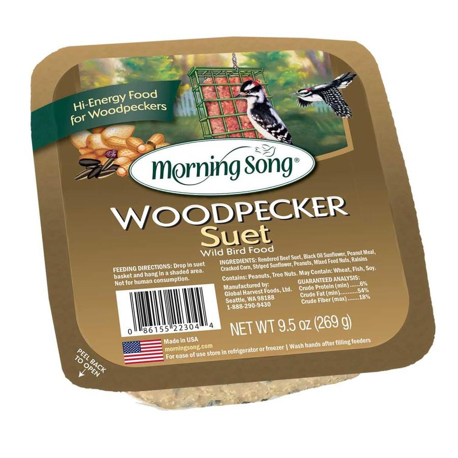 Morning Song 9.5 Bird Food Cake