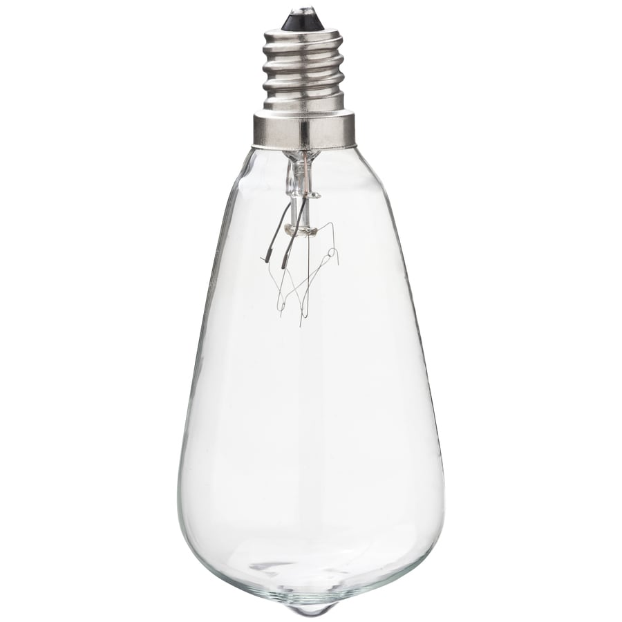 Gemmy Indoor/Outdoor Clear Incandescent Edison String Light Bulbs
