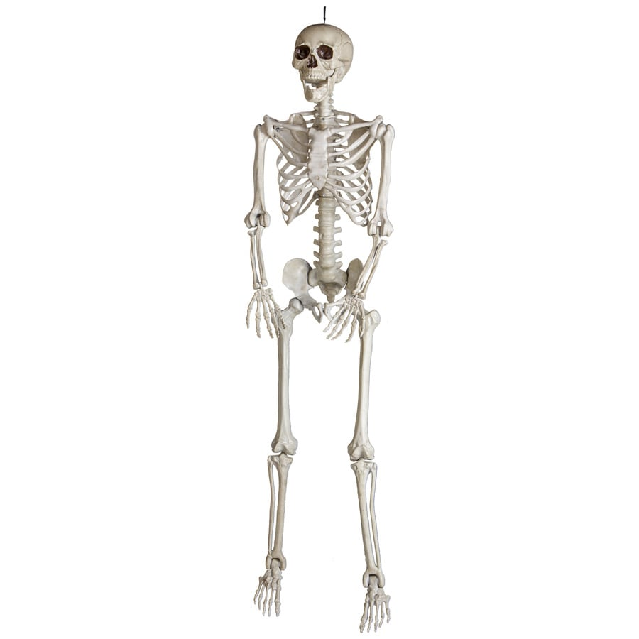 Holiday Living Skeleton