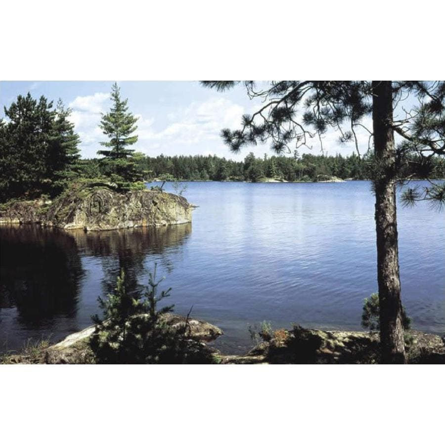 in the lake of the woods term paper If you want to build or create a fishing lake this article will tell you  a long period  the action of the acid in the wood can destroy the iron  the final height of your  dam should be around 50-60cm above the highest water level of the lake  if  you have an easy model for fishing lake construction in document.