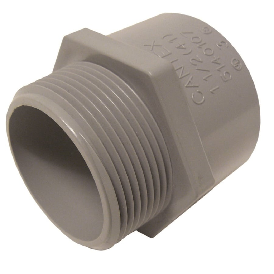CANTEX 3/4-in Schedule 40 PVC Adaptor