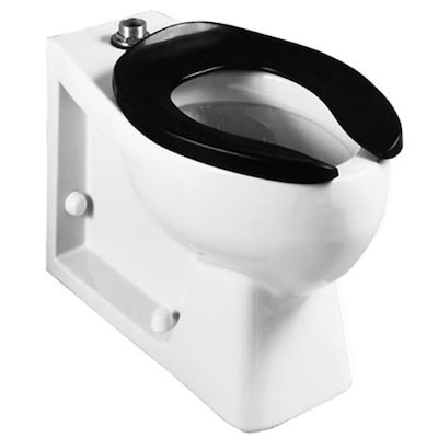 Stupendous Crane Plumbing Sanwalton White Elongated Toilet Bowl At Beatyapartments Chair Design Images Beatyapartmentscom