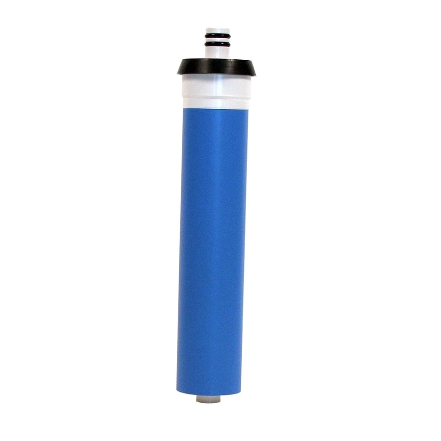 EcoWater Replacement Water Filter with Reverse Osmosis
