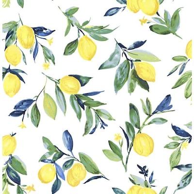Fruit Vegetables Wallpaper At Lowes Com