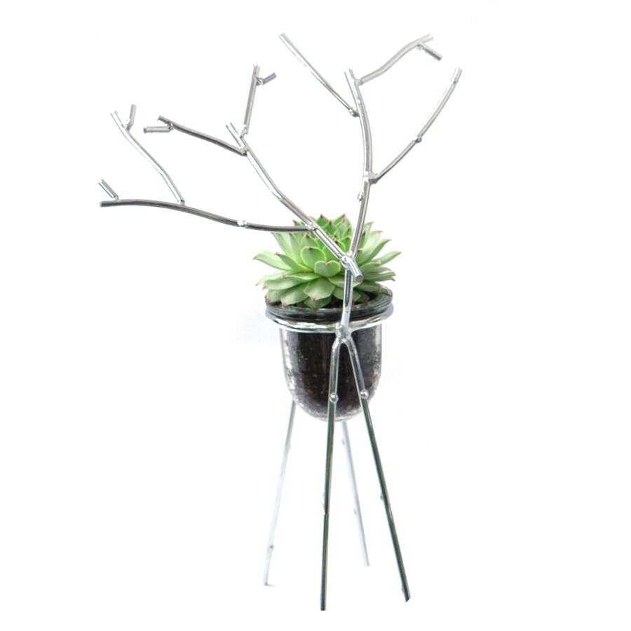 4-oz Mixed Cacti (AL001)