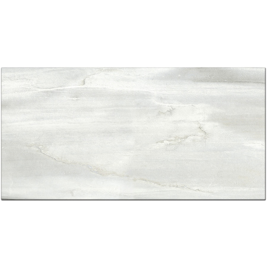 Style Selections Chique Gris Porcelain Floor Tile (Common: 12 In X 24