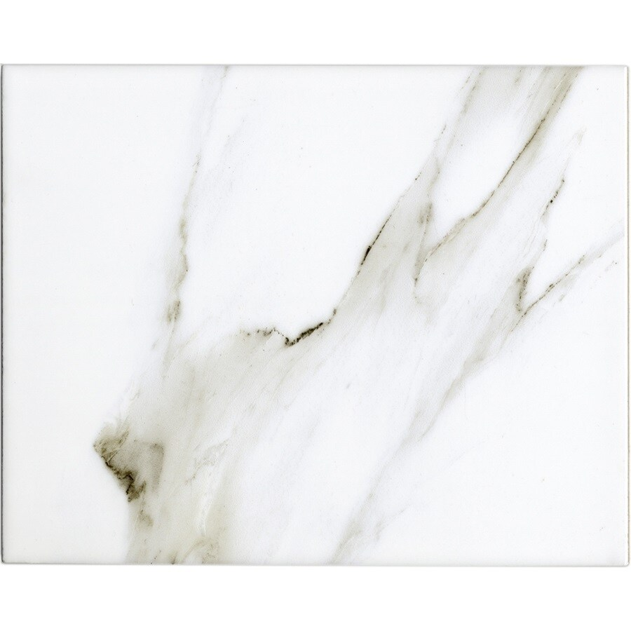 Shop GBI Tile Stone Inc Ceramic Calacatta Ceramic Floor And Wall - 8 x 10 white ceramic tile