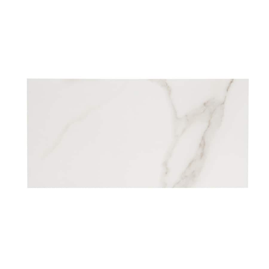 Shop Style Selections Calacatta White Porcelain Subway Tile Common - 6 x 12 white porcelain tile