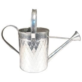 Shop watering cans at - Gallon metal watering can ...