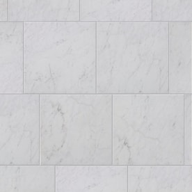 Style Selections Futuro White 12-in x 12-in Glazed Porcelain Marble Look Tile