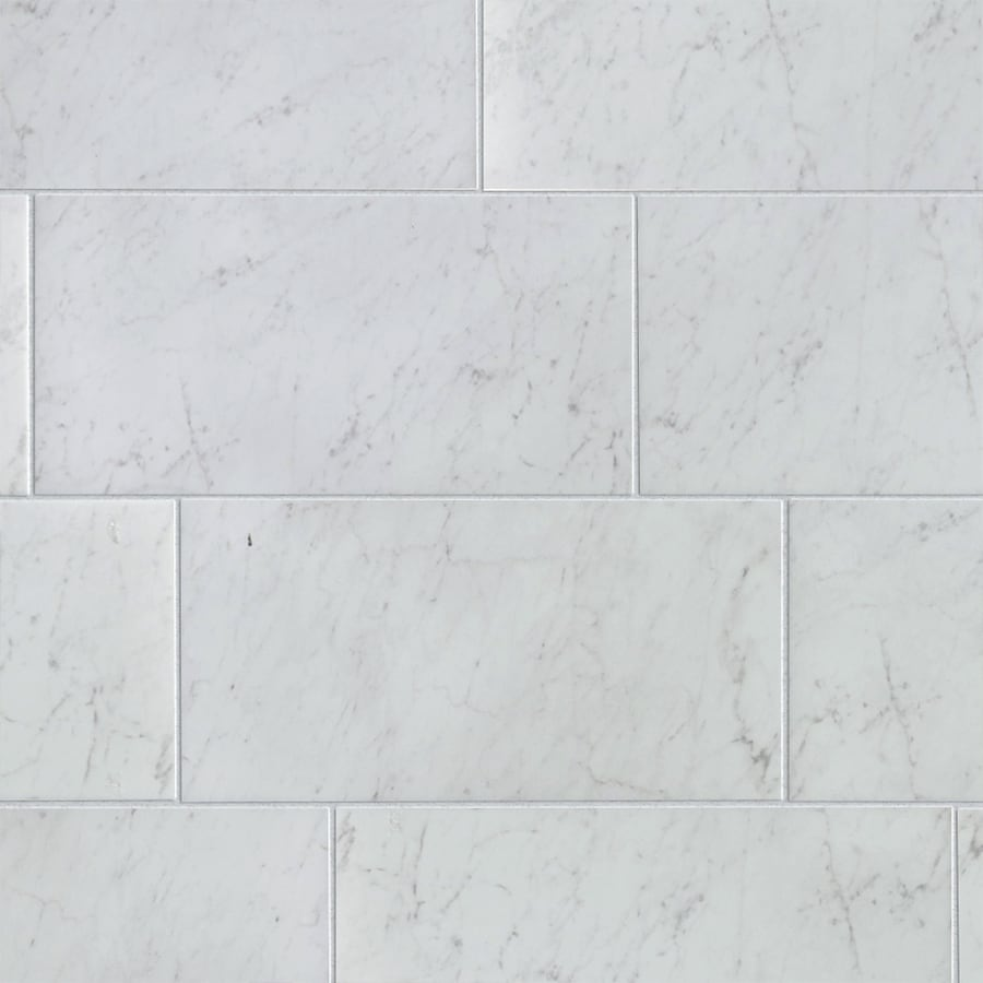 Shop Style Selections Futuro White Porcelain Floor And Wall Tile Common 12 In X 24 In Actual