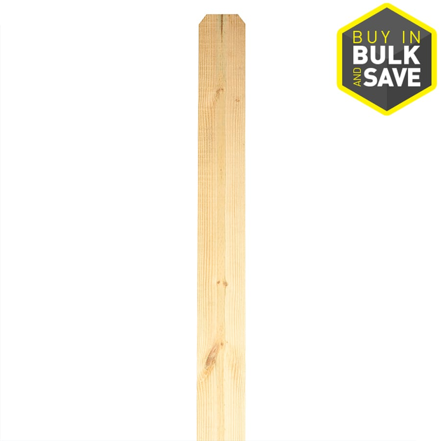 Severe Weather (Common: 1-in x 6-in x 6-ft; Actual: 0.75-in x 5.5-in x 6-ft) Pressure Treated Southern Yellow Pine Fence Picket