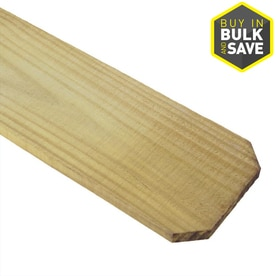Severe Weather (Common: 1-in x 6-in x 6-ft; Actual: 0.625-in x 5.5-in x 6-ft) Pressure Treated Wood Pine Dog Ear Wood Fence Picket