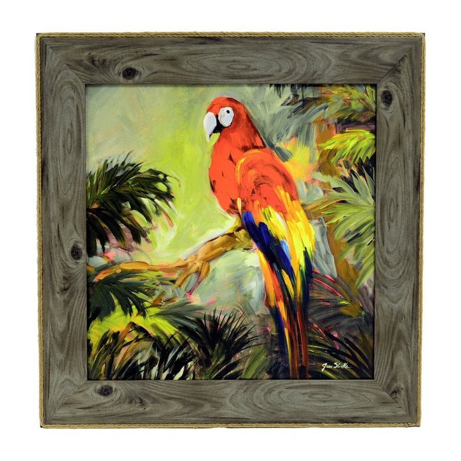 Dcor Therapy 1-Piece 24-in W x 24-in H Framed Plastic Parrots At Bay Print Wall Art