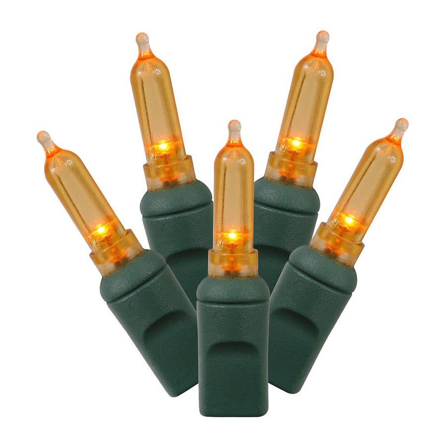 Vickerman 50-Count Constant  Orange LED Plug-In Indoor/Outdoor Christmas String Lights