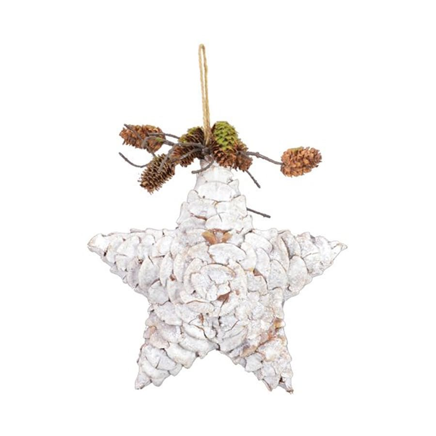 Fantastic Craft Star Ornament