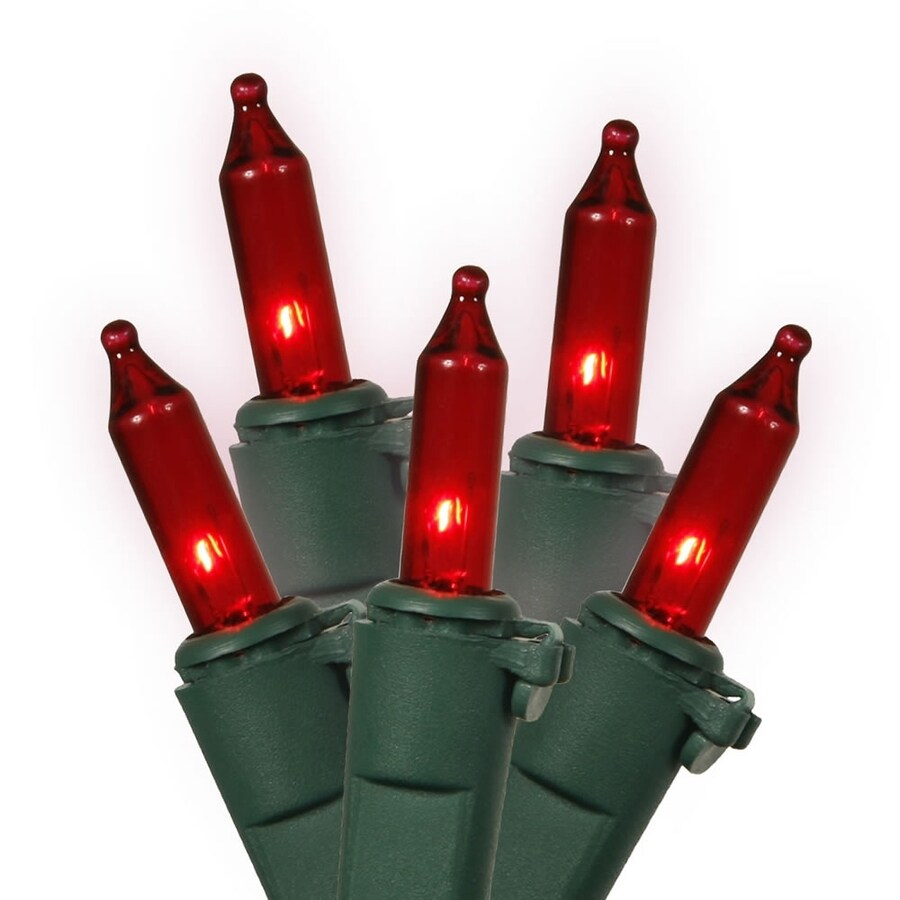 Vickerman 100-Count Constant  Red Mini Incandescent Plug-In Indoor/Outdoor Christmas String Lights
