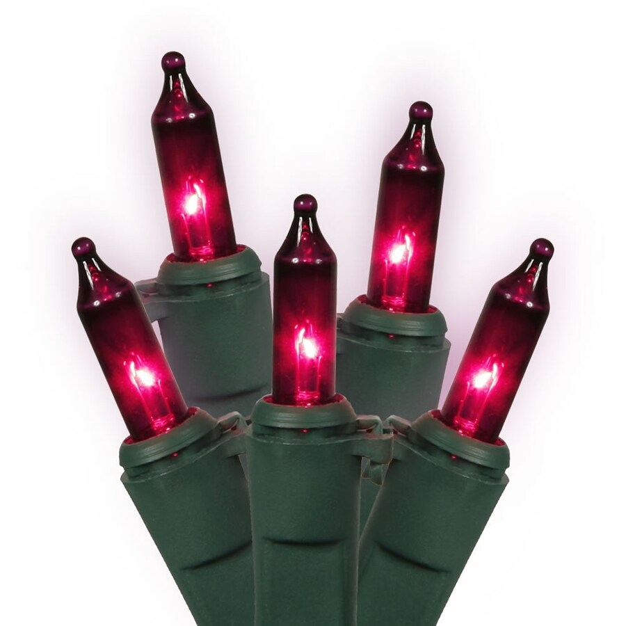 Vickerman 100-Count Constant  Purple Mini Incandescent Plug-In Indoor/Outdoor Christmas String Lights